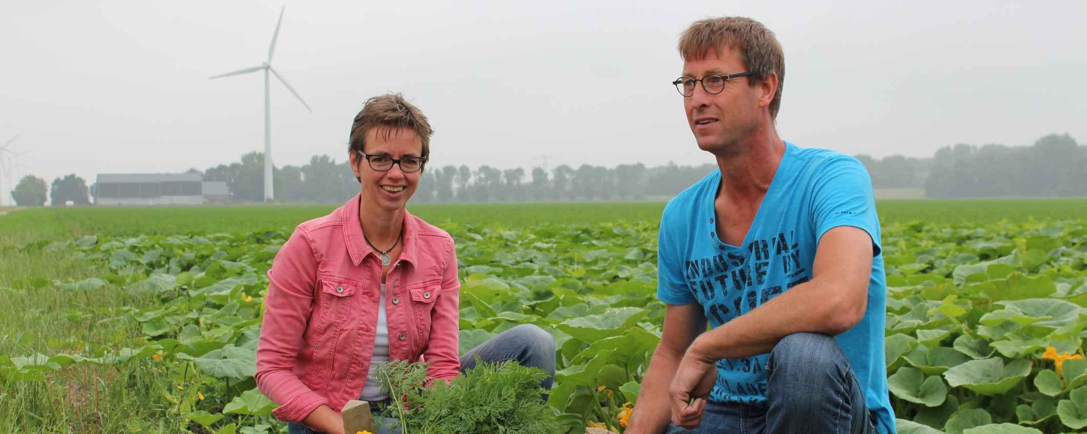 Twee mensen in veld met groenten