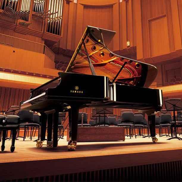 Beleggen in muziekinstrumenten van Yamaha. Kan dat duurzaam?